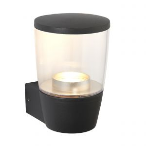Canillo Single Outdoor Wall Light Anthracite Paint/Clear Finish