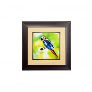 Diyas Home IL70509 (DH) Nature Parrot,  Black Frame ,  Blue, Yellow, Black,  Green, Red Crystal