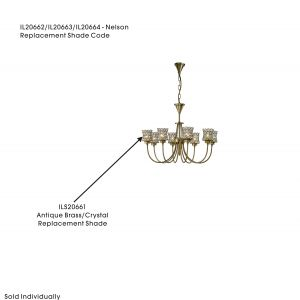Diyas ILS20661 Nelson Shade Antique Brass/Crystal